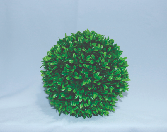 Flor Bola Buxinho Verde